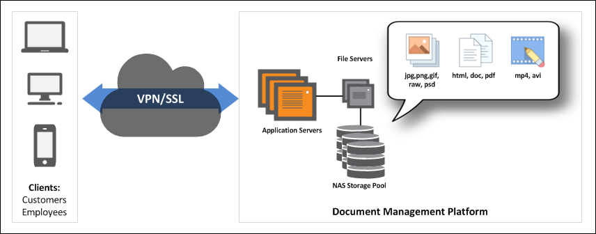 Conventional DMS system including file servers and storage backend architecture