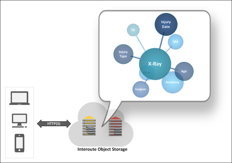 Interoute Object Storage used to store X-ray images with user-defined metadata